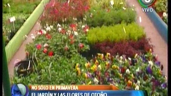 Jardin 935 Bahia Blanca Of El Jardin De Oto O Canal 9 Bahia Blanca